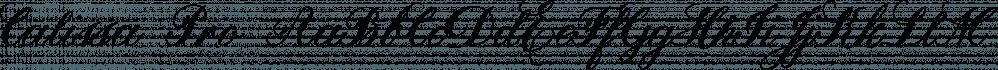 Calissa Pro font family by Aga Silva Fonts