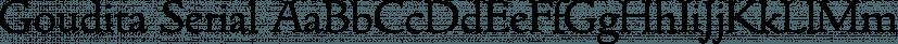 Goudita Serial font family by SoftMaker
