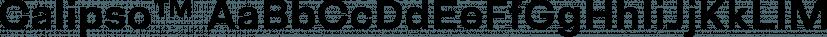 Calipso™ font family by Nicolas Deslé