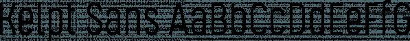Kelpt Sans font family by Typesketchbook