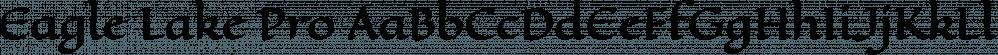 Eagle Lake Pro font family by Stiggy & Sands