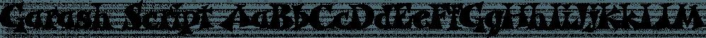 Garash Script font family by Dharma Type