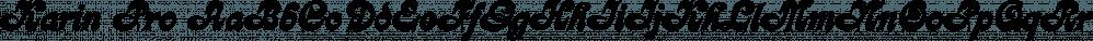 Karin Pro font family by SoftMaker