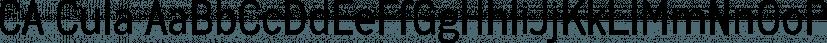 CA Cula font family by Cape Arcona Type Foundry