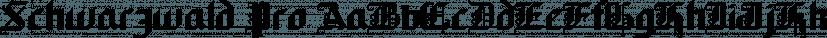 Schwarzwald Pro font family by SoftMaker