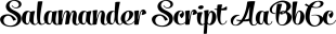 Salamander Script font family mini