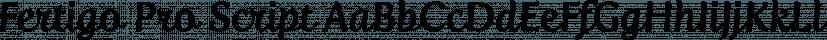 Fertigo Pro Script font family by exljbris Font Foundry