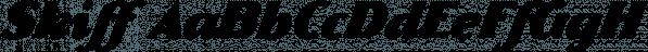Skiff font family by NREY