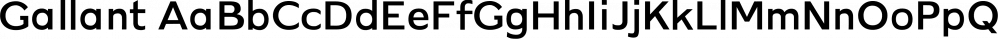 Gallant font family by Cappello Designs