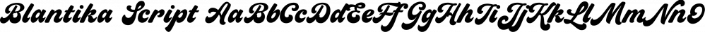 Blantika Script font family by Letterhend Studio