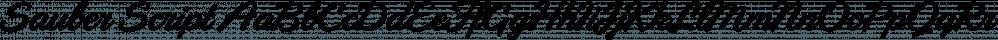 Sauber Script font family by Typejockeys