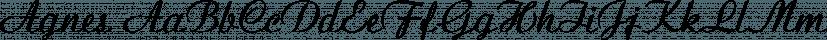 Agnes font family by FontSite Inc.
