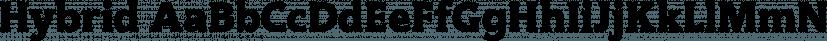 Hybrid font family by ParaType