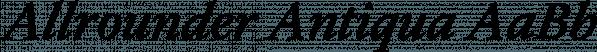 Allrounder Antiqua font family by Moritz Kleinsorge
