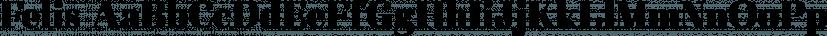 Felis font family by Typomancer