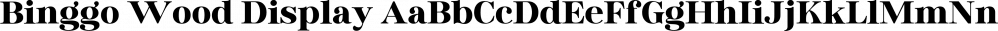 Binggo Wood Display font family by Genesislab