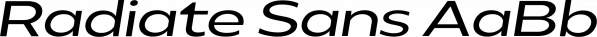 Radiate Sans font family by Studio Sun