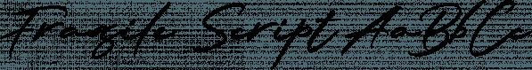 Fragile Script font family by Dhan Studio