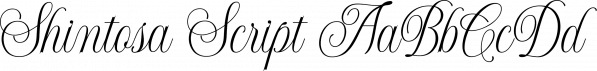 Shintosa Script font family by Picatype Studio
