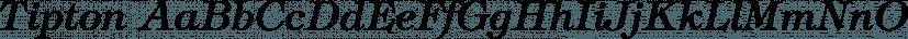 Tipton font family by FontSite Inc.