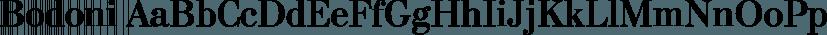 Bodoni font family by ParaType