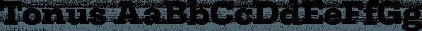 Tonus font family by Hurufatfont Type Foundry