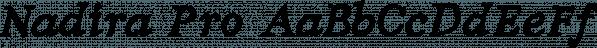 Nadira Pro font family by Konstantina Louka