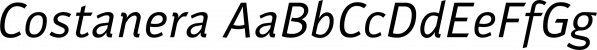 Costanera font family by W Foundry