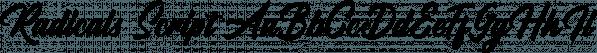 Radicals Script font family by Letterhend Studio
