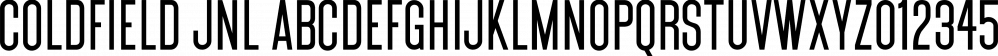 Coldfield JNL font family by Jeff Levine Fonts