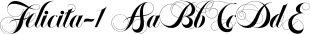 Felicita font family mini