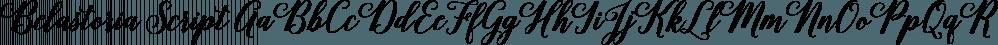Belastoria Script font family by Seniors Studio