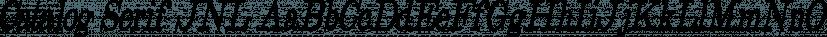 Catalog Serif JNL font family by Jeff Levine Fonts