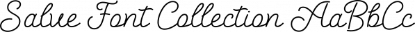 Salve Font Collection font family by Ahmet Altun