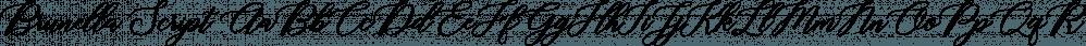 Brunella Script font family by Seniors Studio