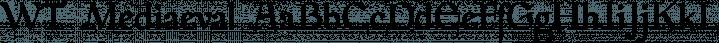 WT Mediaeval font family by Wraith Types