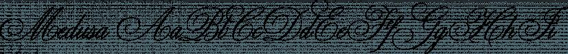 Medusa font family by ReType