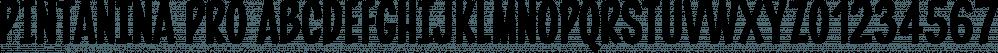 Pintanina Pro font family by Rodrigo Typo