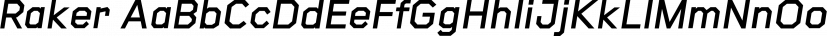 Raker font family by Wordshape