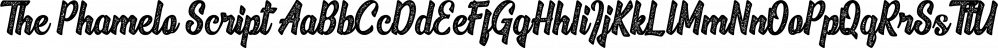 The Phamelo Script font family by madeDeduk