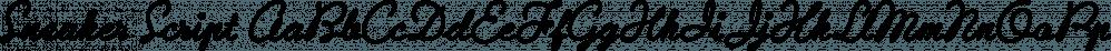 Sneaker Script font family by Dharma Type