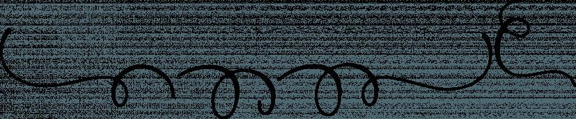 Platipus Script font family by Area Type Studio