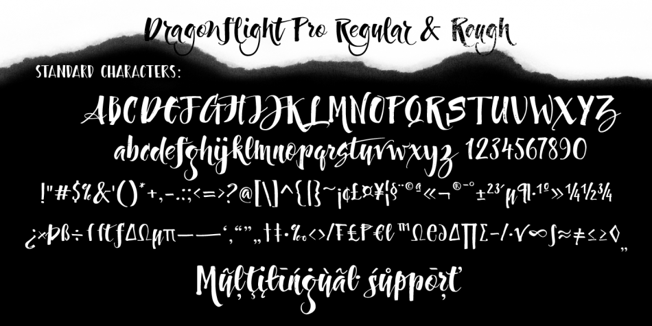 Download Dragonflight Pro Font Family